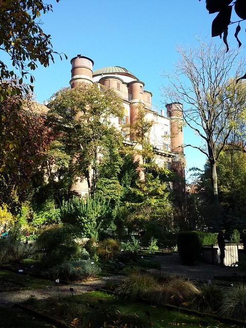 Botanical Garden - Orto Botanico di Brera