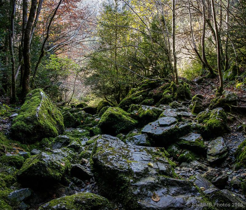La salida de agua de la Cueva del Ibón
