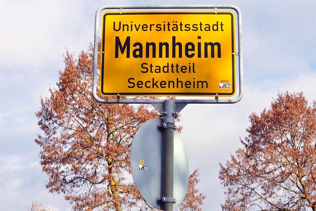 Mannheim-Seckenheim im Novembet 2016 ... Botanischer Streifzug ... Naturfotografie ... Fotos: Brigitte Stolle