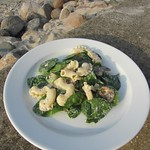 Pasta-Champignonsalat mit Spinat und Ricotta