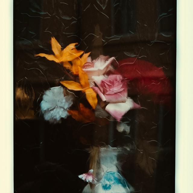 flowers through window