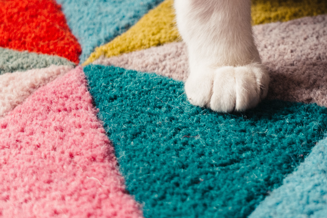 cat paw on triangle patterned rug