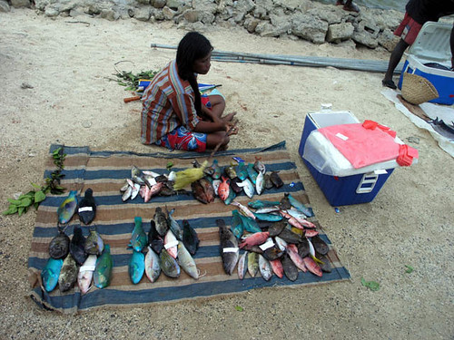 Women are heavily involved in many aspects of fisheries and aquaculture in the Pacific and need to be included in all decisions, Solomon Island. Photo by Jamie Oliver, 2008