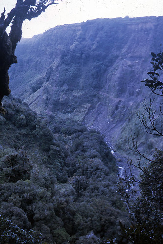 Mangonui New Zealand  city pictures gallery : Mangonui Gorge, Taranaki, New Zealand, 1968 | Phillip Capper | Flickr