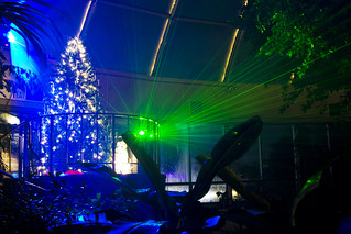 December on the Red: Barnwell Garden and Art Center Holiday Laser Light Show | by Holiday Trail of Lights