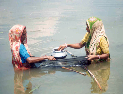 Women fishing, Bangladesh. Photo by WorldFish, 2006