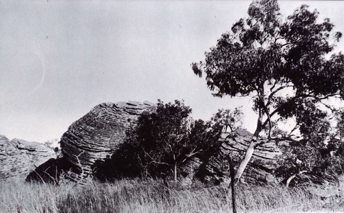 1921 Country between Ivanhoe and Argyle North Coast - KHS-2011-15-14-P2-D | by Kununurra Historical Society