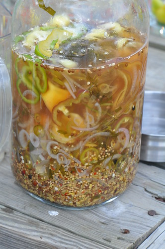 Pepper Infused Vodka Mixture | by swampkitty