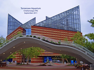 Tennessee Aquarium -- Chattanooga September 2011 by Ron Cogswell
