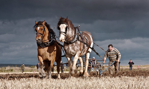 Scottish Ploughing Championships 2011 | by Colin Campbell (Bruiach)