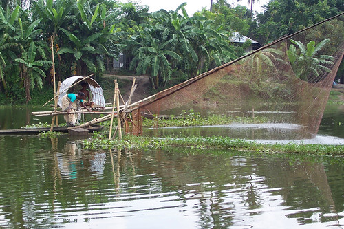 Woman fishing, Bangladesh. Photo by WorldFish, 2004