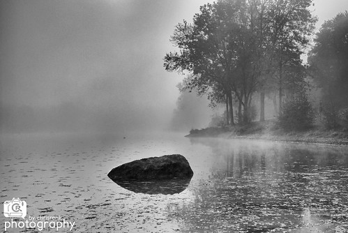 Misty Morning | by Chris Renk