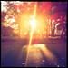 Sunset in Mistletoe Heights