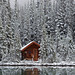Rustic Cabin of Lake O'Hara Lodge in Snow