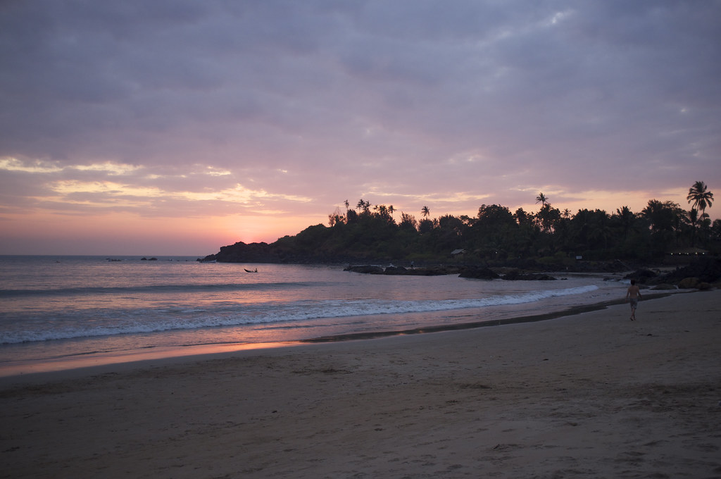 Image result for patnem beach goa