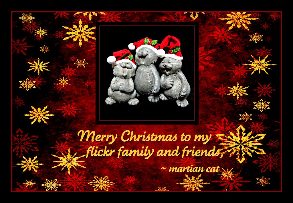 christmas in my family My family is christian but are very accepting of my new faith they by no means  want to put any pressure on me i find that especially around christmas time is.
