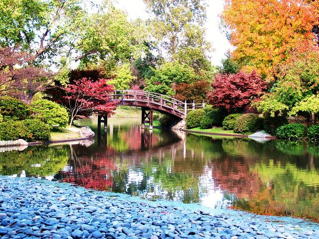 Japanese Botanical Garden Flickr Photo Sharing
