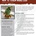 How to Teach Magic Loop teaching module, page 1