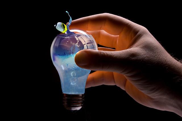 light bulb fish tank flickr photo sharing. Black Bedroom Furniture Sets. Home Design Ideas