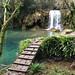 Puenteando el agua -Cogolls-