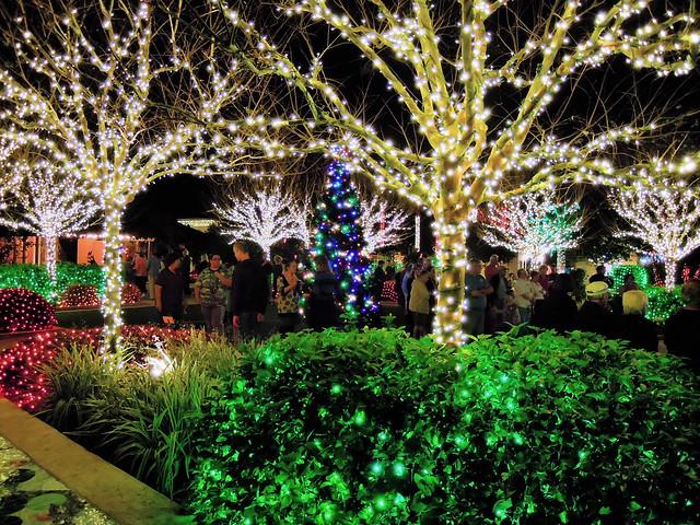 Florida Botanical Gardens Largo Fla Flickr Photo Sharing