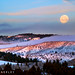 Swan Valley Moonset