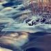 Eskilstuna_Skjulsta_20120201_#3