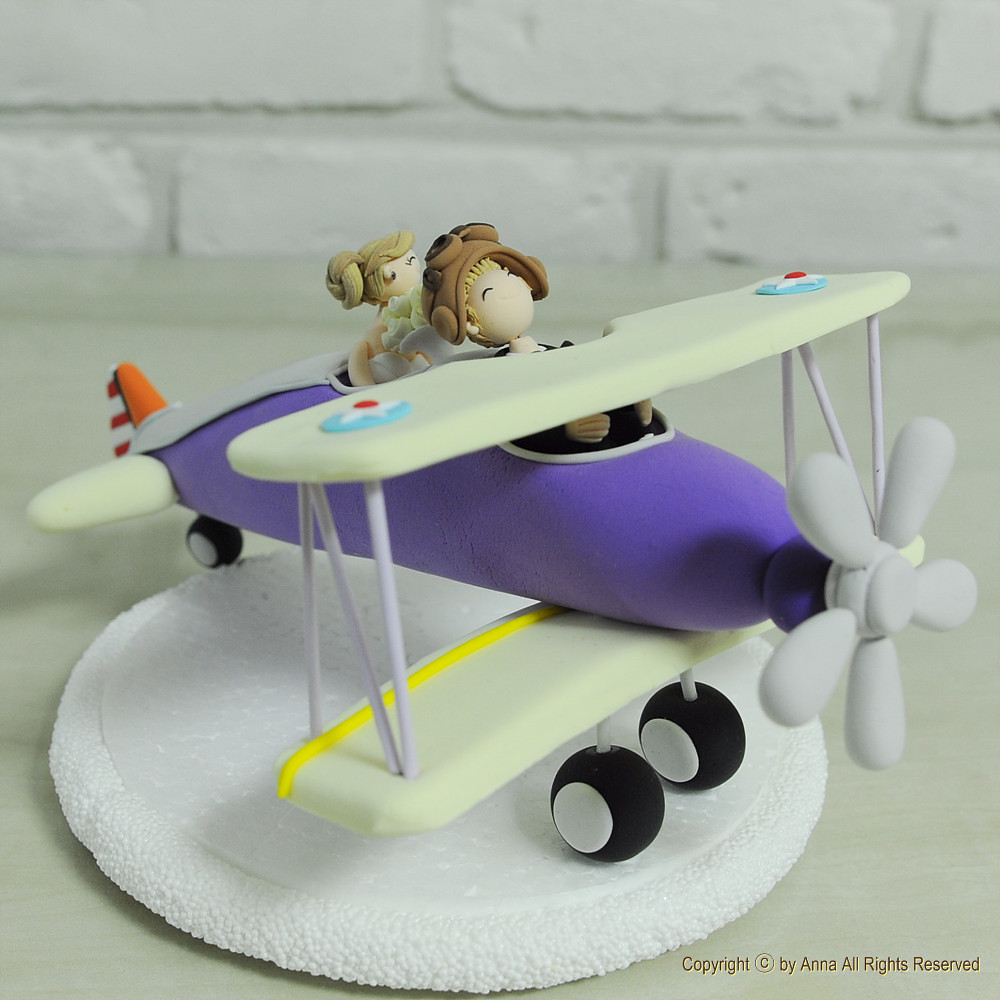 airplane cake topper on the air plane for honeymoon cho flickr 1250