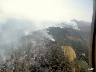 Miller Fire from the helicopter | by NM Fire Info