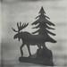 Week Nº1-009: Moose