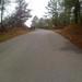 Road leading to wooden bridge