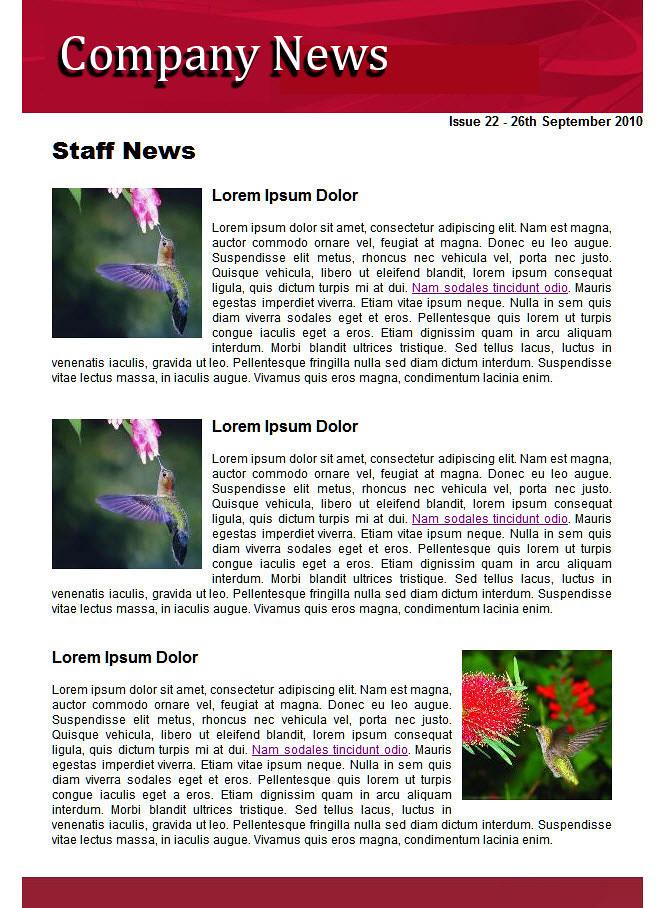 internal newsletter template