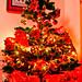 Christmas Tree at 13