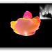 Screen Shot 2012-01-31 at 1.42.54 AM