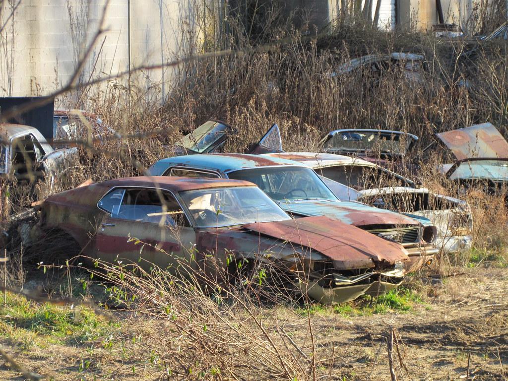 12 11 Gelsi S Mustang World Vineland Nj 007 Joe Grippo