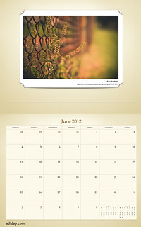 ADIDAP Calendar 2012 UK Retro June | by akhater