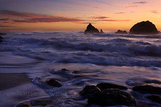 SF sunset blend _ 0922 | by shutterbuzzz