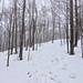 Gile Mountain
