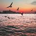Venice – Canale Della Giudecca