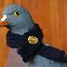 Pigeon Post Scarf