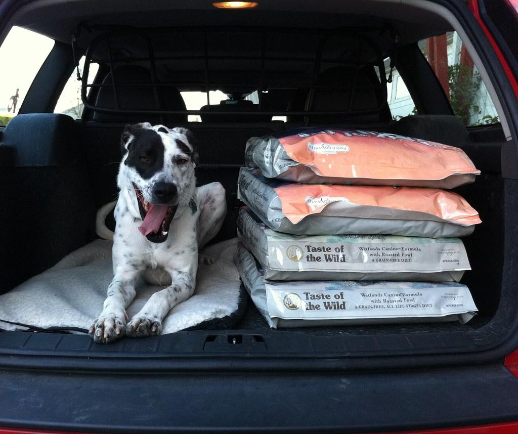 Pet Food Express Campbell