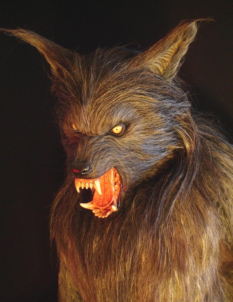 Howling Wolf Fullsize Movie Prop Werewolf Wolfman Film Hal