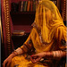 framed in yellow, bikaner