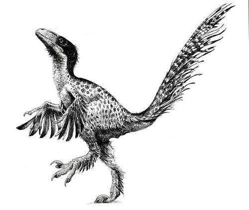 utahraptor | by paul heaston