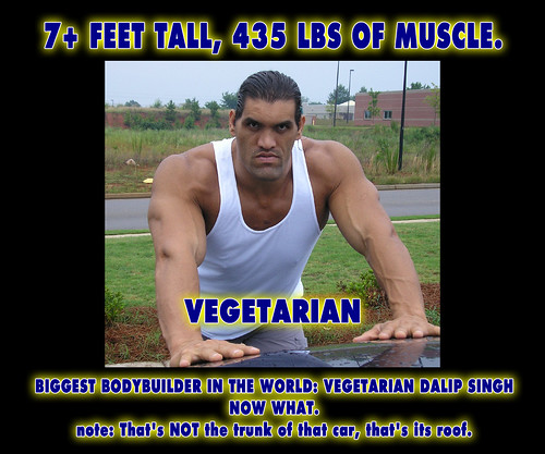 Biggest Bodybuilder is Vegetarian - 7ft tall 435 pounds Ma ...