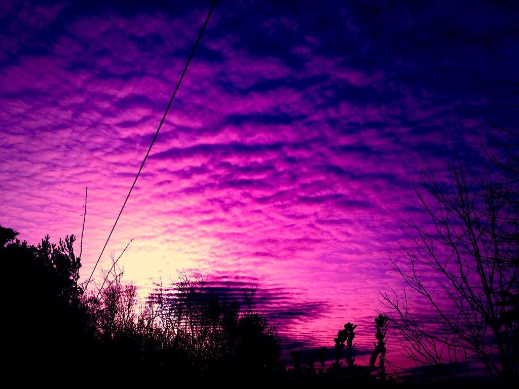 Purple sky | smlp.co.u...