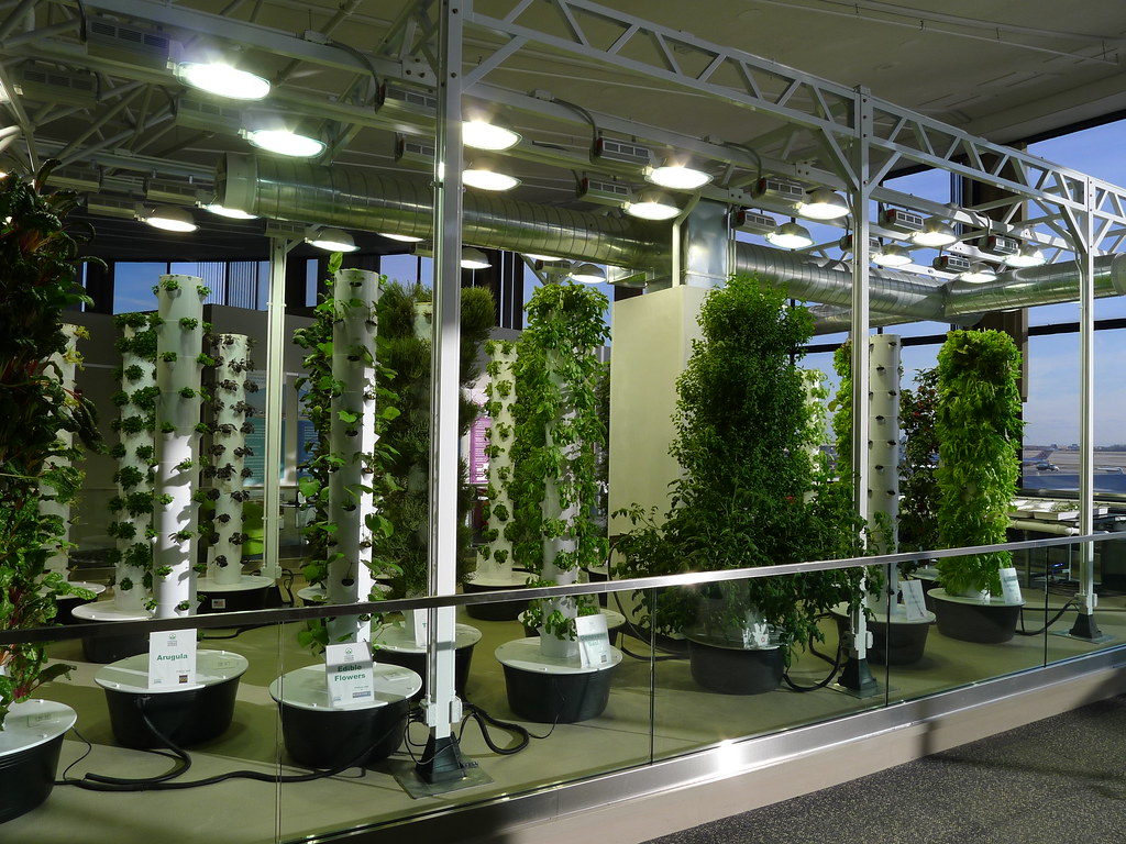 20120208 1647 chicago o 39 hare airport vertical farm flickr for Indoor gardening lights