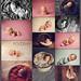 newborn baby photography workshop, Newborn Dreamland collage