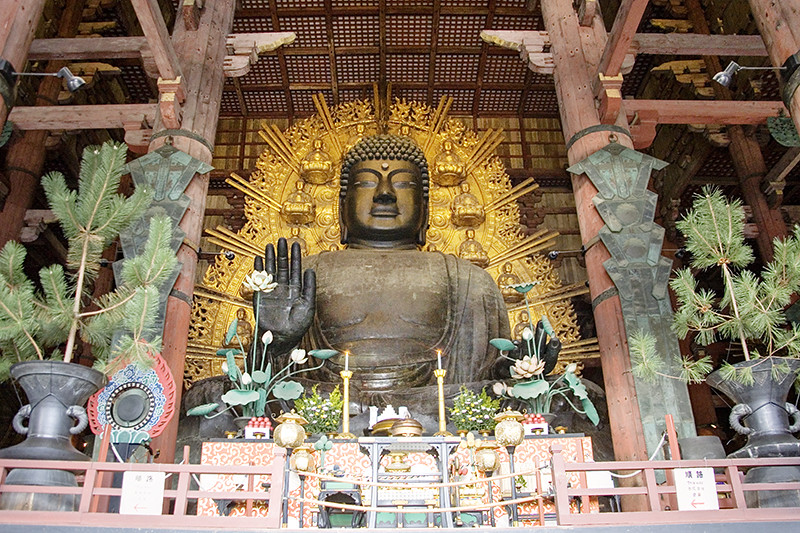 Image Gallery nara daibutsu