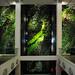 Berlin Dussmann-Haus, Vertikaler Garten von Patrick Blanc